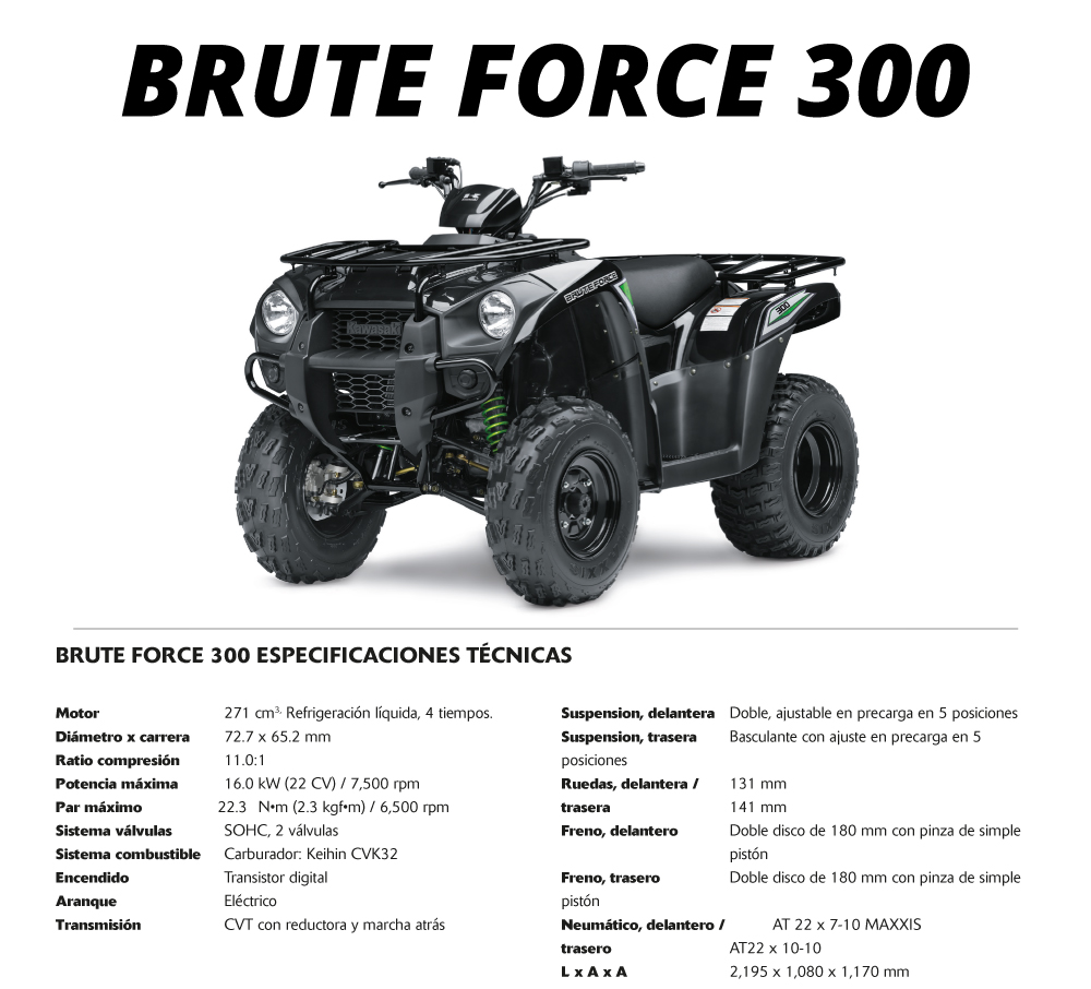 Brute Force 300